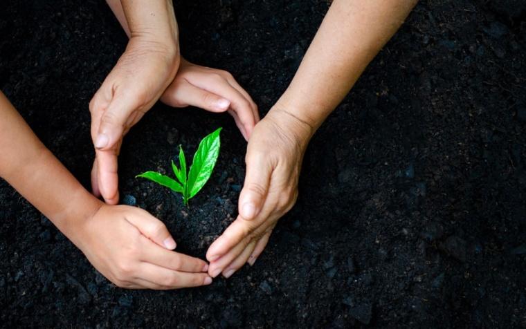 Polizza Tutela Ambientale: cos'è, quali sono i vantaggi e a chi si rivolge
